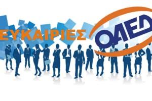 ΟΑΕΔ: Όλα τα προγράμματα απασχόλησης - 130.000 νέες θέσεις εργασίας