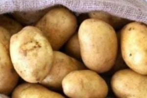Προσοχή! Αν δείτε αυτό στις πατάτες πρέπει να τις πετάξετε αμέσως (photo)