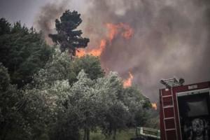 Φωτιά στο Μεσολόγγι