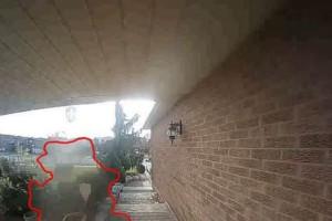 46χρονη άκουσε τον σκύλο της να γαβγίζει - Μολις κοίταξε την κάμερα ασφαλείας... κοκκάλωσε (Video)