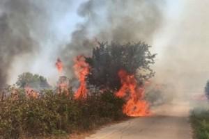 Μεγάλη φωτιά στην Κερατέα - Κινδυνεύουν σπίτια