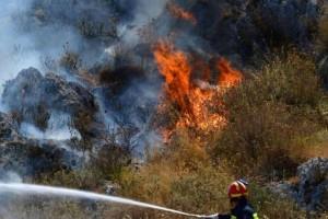 Φωτιά στο Άλσος Βεΐκου στο Γαλάτσι