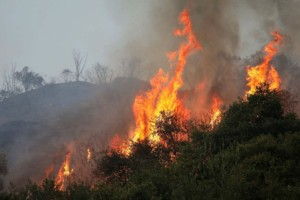 Φωτιά στο Ρέθυμνο (photo)