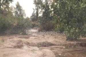 Κακοκαιρία «Ιανός»: Συναγερμός με εγκλωβισμένους σε σπίτια και αυτοκίνητα στην Φθιώτιδα