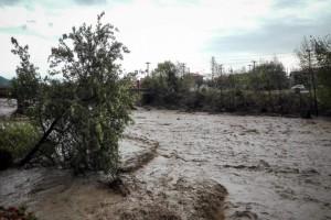 Τραγωδία στην Καρδίτσα: «Βρισκόμαστε 13 μέρες αποκλεισμένοι»