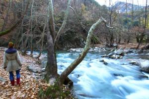 Η φωτογραφία της ημέρας: Καλημέρα από την πανέμορφη Ευρυτανία