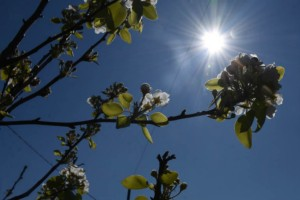 Βελτιωμένος ο καιρός σήμερα: Ανεβαίνει το θερμόμετρο στους 26 βαθμούς