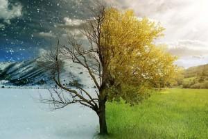 """""""Τρελαίνεται"""" ο καιρός στην Ελλάδα - Χειμώνας και καλοκαίρι παράλληλα"""
