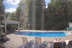 Άντρας έκανε ηλιοθεραπεία στην πισίνα του όταν ξαφνικά τον ακούμπησε...
