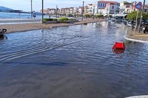 Σεισμός στη Σάμο: Η θάλασσα κάλυψε την στεριά - Μαρτυρίες για τσουνάμι από τους κατοίκους (βίντεο)