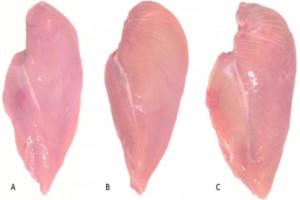 Μεγάλη προσοχή: Τι σημαίνουν οι λευκές ραβδώσεις στο κοτόπουλο