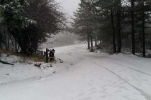 Η φωτογραφία της ημέρας: «Ντύνεται» στα λευκά και η Αττική - Χιόνια στην Πάρνηθα