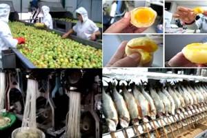 10 τοξικές τροφές από την Κίνα που όλοι τρώμε αλλά κανείς δεν το γνωρίζει!