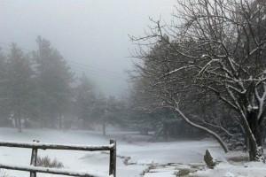 Η φωτογραφία της ημέρας: Στη χιονισμένη Πάρνηθα!