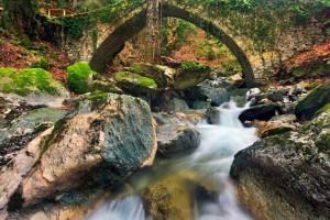 Τσαγκαράδα: Βολτάρουμε σε ένα από τα ομορφότερα χωριά του Πηλίου!