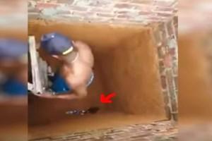 Κατέβηκε τη σκάλα για να σώσει το γατάκι - Αυτό που κατέγραψε η κάμερα έχει προκαλέσει φρενίτιδα στο διαδίκτυο