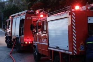 Ερέτρια: Νεκρή 76χρονη από φωτιά που ξέσπασε στο σπίτι της