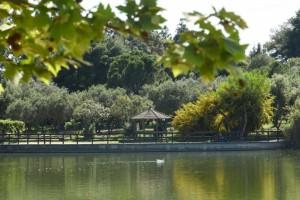 «Πάρκο Τρίτση»: Ξεκινά το πρόγραμμα των πολιτιστικών εκδηλώσεων