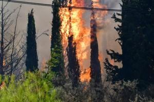 Πάτρα: Μαίνεται το πύρινο μέτωπο στη Δροσιά - Σε ύφεση η φωτιά στην Ελεκίστρα