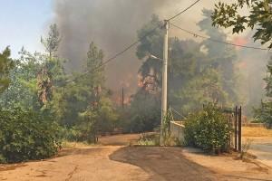 Μάχη μην καούν σπίτια στη Σταμάτα: «Η πυρκαγιά κινείται προς τον Διόνυσο» - Εκκενώθηκε ο οικισμός Γαλήνη!