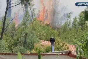 """Καταστροφικές διαστάσεις παίρνει η φωτιά στη Σταμάτα: """"Η κατάσταση είναι ανεξέλεγκτη, οι φλόγες γλείφουν σπίτια""""!"""