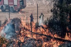 Φωτιά στη Σταμάτα: Εκκενώθηκε κατασκήνωση της Ροδόπολης