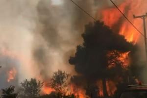 Φωτιά στη Σταμάτα: Σπίτια και αυτοκίνητα παραδόθηκαν στις φλόγες - Νέες εικόνες από τη πύρινη λαίλαπα (Video)