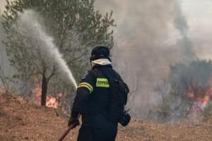 Φωτιά Ζήρια Αχαΐας:  Εκκενώνεται οικισμός - Κλείνει η παλαιά εθνική και η Ολυμπία οδός