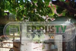 Ιωάννινα: Αυτό είναι το σπίτι που βρέθηκε νεκρή η 69χρονη μέσα σε μπαούλο