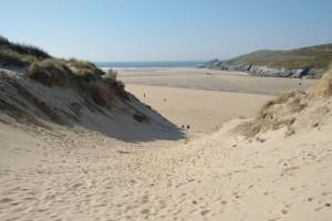 Τραγικό περιστατικό στην παραλία: Άνδρας χτύπησε μέχρι θανάτου με παιδικό φτυάρι γλάρο
