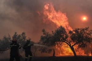 Ισχυρή πυρκαγιά στην Σταμάτα - Κοντά σε σπίτια οι φλόγες