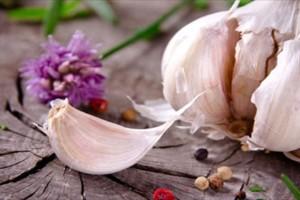 Οικολογικοί τρόποι προστασίας των φυτών με σκόρδο - 2 μορφές σκευασμάτων