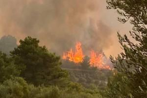 """Φωτιά στη Ρόδο: Ενεργοποιήθηκε ο """"Κοπέρνικος"""" μετά από εντολή Χαρδαλιά"""