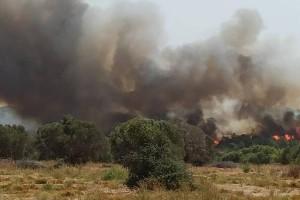 Νέα πυρκαγιά κοντά στην πόλη της Ρόδου