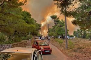 Καίγονται σπίτια στη Δροσοπηγή: Εκκενώνονται Κρυονέρι και Αφίδνες - Φόβοι για μπλακ άουτ