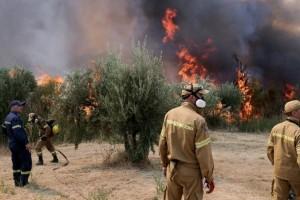Φωτιά στην Ηλεία: Εντοπίστηκε ύποπτος για εμπρησμό