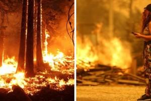 """""""Μητσοτάκη γ@μ@@σ@@"""" αλλά σε Βουλγαρία και Τουρκία μετρούν νεκρούς από τις πυρκαγιές!"""