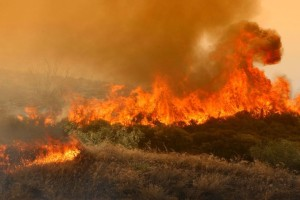 Προσοχή! Σε ποια περιφέρεια είναι πολύ υψηλός ο κίνδυνος για φωτιά σήμερα
