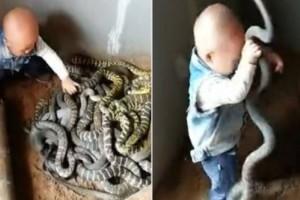 Γονείς επιτρέπουν στο νήπιο παιδί τους να παίζει με φίδια και το βίντεο προκάλεσε την οργή του διαδικτύου