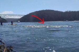 Όταν είδε την θάλασσα να αφρίζει άρπαξε αμέσως την κάμερα - Αυτό που κατέγραψε θα σας αφήσει με το στόμα ανοιχτό (Video)