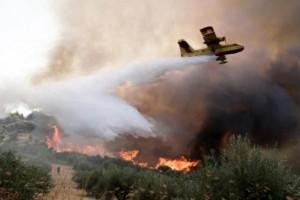 Πυρκαγιές: Τι ορίζει η ΚΥΑ για τις αποζημιώσεις των πυρόπληκτων
