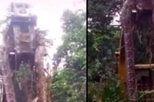 Βρέθηκε το μεγαλύτερο φίδι του κόσμου - Με γερανό το σήκωσαν (video)