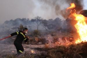 Συναγερμός στην Αργολίδα - Φωτιά σε δασική έκταση
