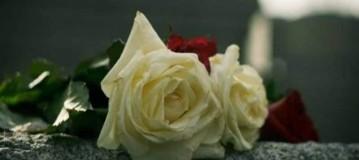 Τραγική απώλεια: Πέθανε ο Ρομπέρτο!