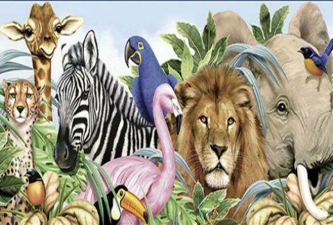 Πόσα χρόνια ζει το κάθε ζώο...(;)