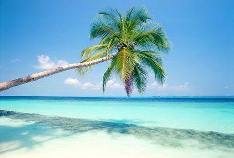 Νησιά που δεν κατοικήθηκαν πότε και παρέμειναν θεϊκά! Ποια είναι τα πιο... παρθένα μέρη της Γης;;; (PHOTOS)