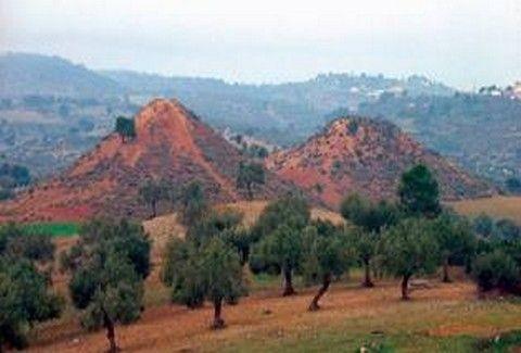 ΚΑΤΙ ΠΕΡΙΕΡΓΟ ΣΥΜΒΑΙΝΕΙ ΣΤΑ ΜΕΓΑΡΑ! Τι είναι οι ΜΥΣΤΗΡΙΩΔΕΙΣ ΛΟΦΟΙ που έχουν ασχοληθεί ακόμα και οι Αρχαίοι Έλληνες;;;