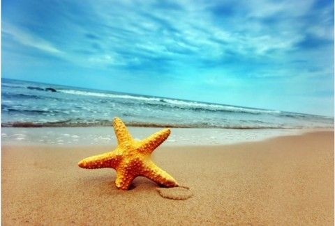 ΖΩΔΙΑ ΑΥΓΟΥΣΤΟΥ: Όλα όσα σας επιφυλάσσουν τα άστρα για τον πιο ανέμελο μήνα του χρόνου - Αναλυτικές προβλέψεις