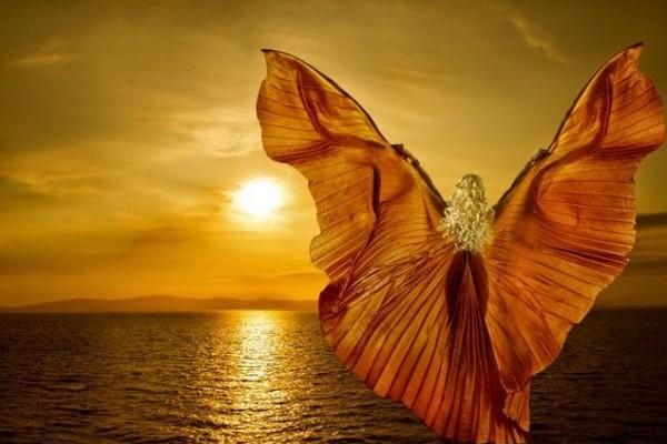 Άρης & Αφροδίτη στο Κριό, τα πάθη ξυπνούν! Τα Ζώδια του Αέρα και της Φωτιάς, το απολαμβάνουν, by F'Ariel!
