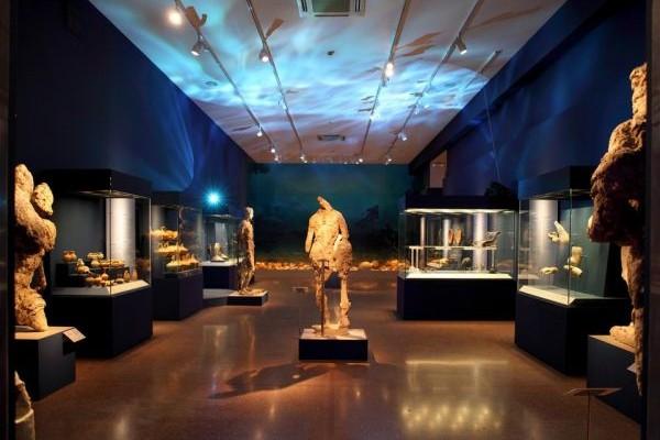 «Οδύσσειες» στο Αρχαιολογικό Μουσείο: Απεικονίσεις πλοίων, μυθικές περιπλανήσεις, θαλάσσιοι θεοί αλλά και τέρατα